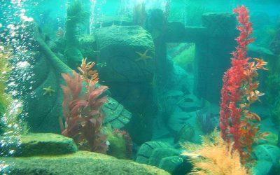 """Game Concept: """"An Underwater World"""""""